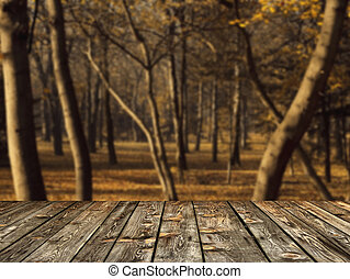 Beautiful autumn forest and wood floor background