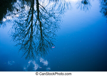 Beautiful Autumn forest landscape reflected in calm lake