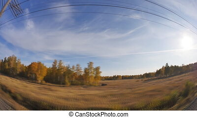 beautiful autumn forest, view from train moving on railway, Transsib