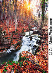 Beautiful autumn forest with river in crimean mountains at sunset