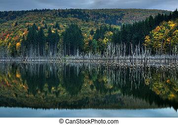 Beautiful autumn lake view