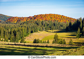 distant mountain in fall colors - beautiful autumn...