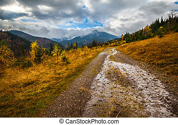 Beautiful autumn landscape in mountains Karpaty in the forest