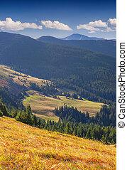 Beautiful autumn landscape in the Carpathian mountains.