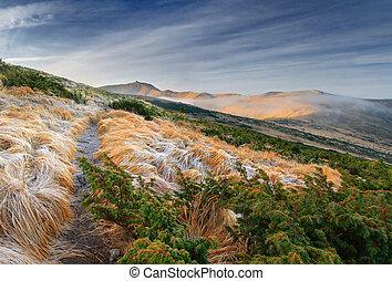 Beautiful autumn landscape in the Carpathian mountains