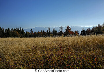 Beautiful autumn landscape of Gorce and Tatra Mountains, Poland