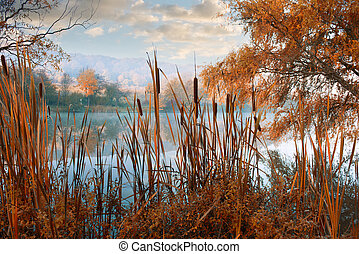 Beautiful autumn landscape