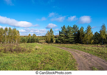 Beautiful autumn landscape with a dirt road on a sunny day.