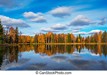 autumn landscape with a line of trees on the lake