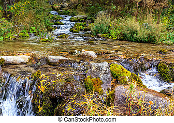 Beautiful autumn landscape with a mountain river, stones, moss and green grass
