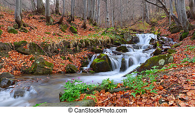 Beautiful autumn landscape with a river