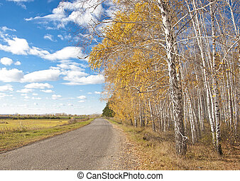 Beautiful autumn landscape with a road on a clear day