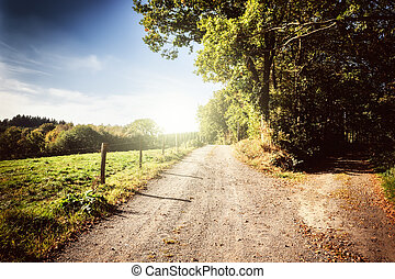 Beautiful autumn landscape with country road at sunny day
