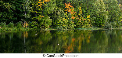 Beautiful autumn landscape with ducks and colorful trees reflecting in the lake