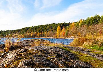 beautiful autumn landscape with yellow-orange trees