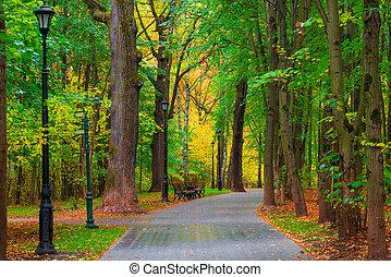 beautiful autumn park city no people