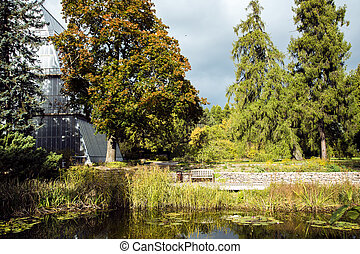 Beautiful autumn park with a pond with lilies