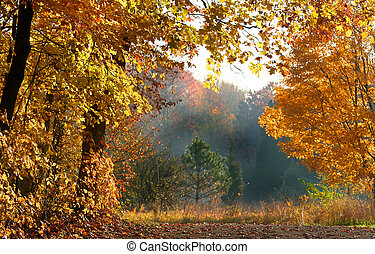 Beautiful Autumn Scene - Scenic autumn landscape in Michigan...