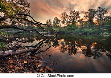 Beautiful autumn sunset at the river in the forest with red and