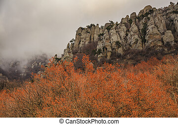 Beautiful autumn trees in the background of high mountains.