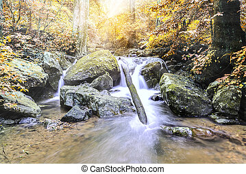 Beautiful autumn waterfall in national park, Saraburi Thailand.