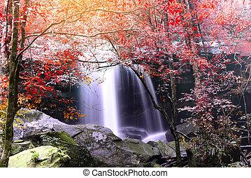 Beautiful autumn waterfall in rainforest.