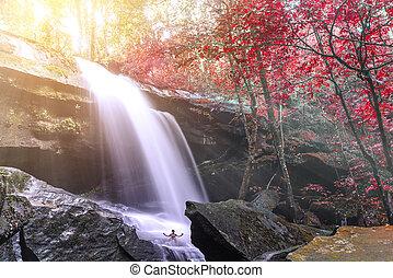 Beautiful autumn waterfall in rainforest with sunlight.