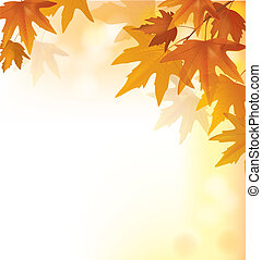 Beautiful autumn yellow background
