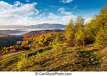 beautiful autumnal morning in mountains. foggy valley in the...