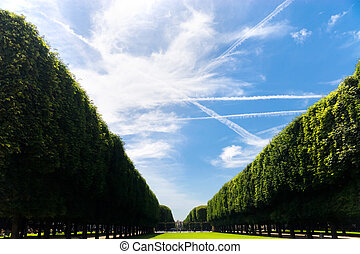 Beautiful avenue. Paris France. Wide angle view.