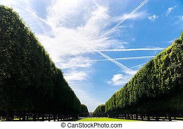 Beautiful avenue. Paris France. Wide angle view.
