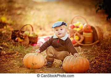 Beautiful baby boy in autumn garden