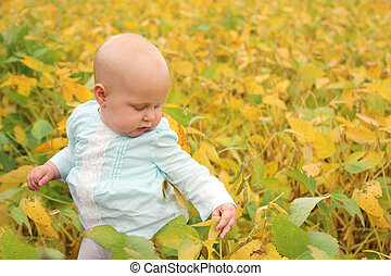 Beautiful Baby Girl Outside in Fall Nature