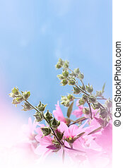 Beautiful Background with flowers against blue sky