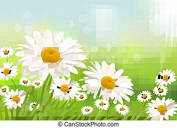 Beautiful background with grass and daisies