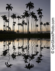 cuba - beautiful backlight landscape with reflection in cuba