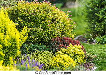 Backyard Garden Plants Close Up