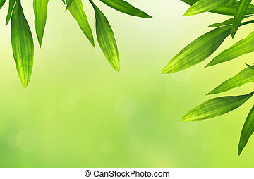 Beautiful bamboo leaves border on green, horisontal