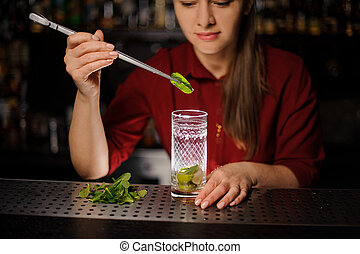 beautiful barmaid prepares a mojito in a crystal glass