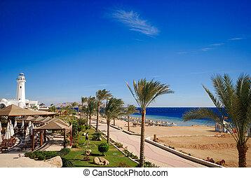 beautiful beach and ocean in sharm el sheikh, egypt