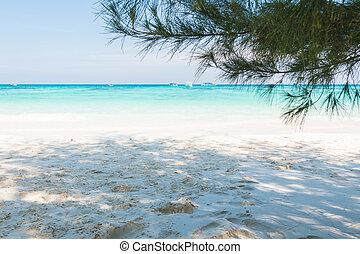 Beautiful  beach at Ta chai Island, Phang Nga Thailand