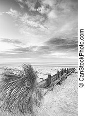 Beautiful beach coastal low tide landscape image at sunrise in black and white