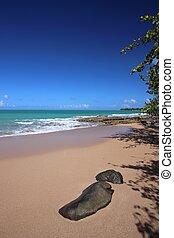 Beautiful beach, Guadeloupe