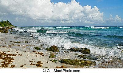 beautiful Beach in Cancun Mexico