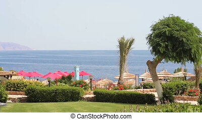 beautiful beach in Egypt and the sea view