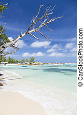 Beautiful Beach, La Digue, Seychelles