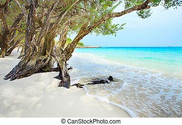 beautiful beach of Ao Wai Koh Samen sea national park in...