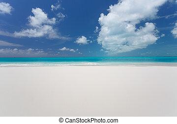 Beautiful beach of caribbean sea