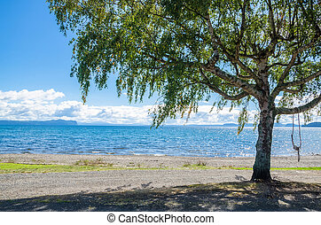 Beautiful beach side of Lake Taupo in New Zealand.