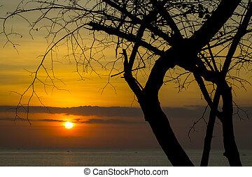 beautiful beach sunset view